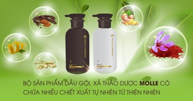bo-doi-thao-duoc-dau-goi